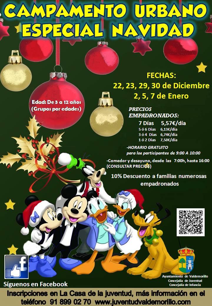 Campamento Navidad 2014 Valdemorillo