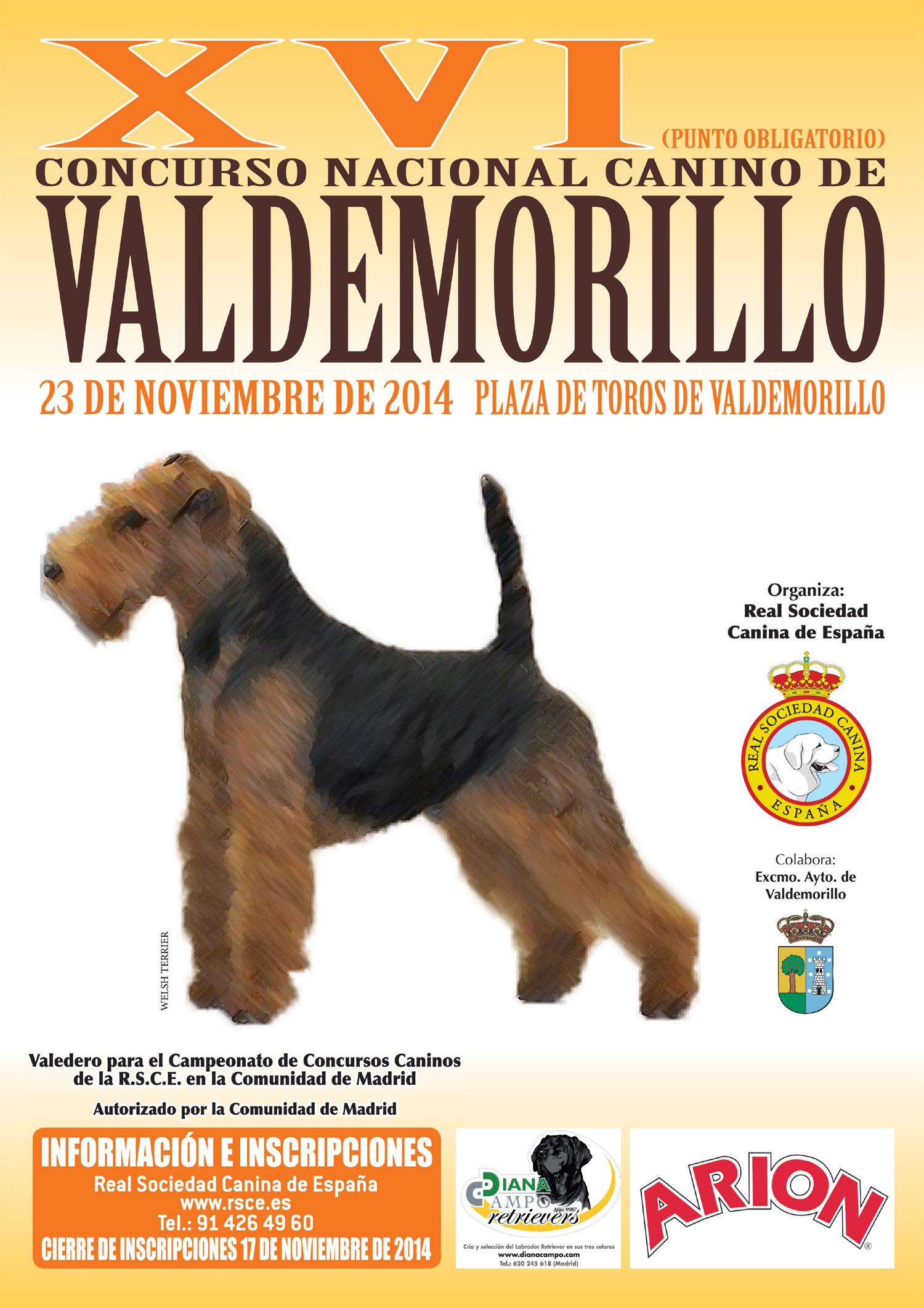 concurso-nacional-canino-valdemorillo