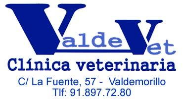 Valdevet veterinario Valdemorillo