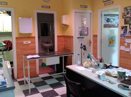 Clinica Veterinaria Colmillos y garras Valdemorillo