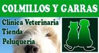 Veterinario Colmillos y Garras valdemorillo
