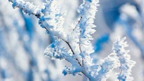 inclemencias invernales Valdemorillo
