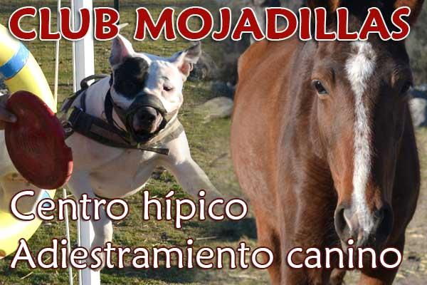 Centro hípico y adiestramiento canino Mojadillas Valdemorillo
