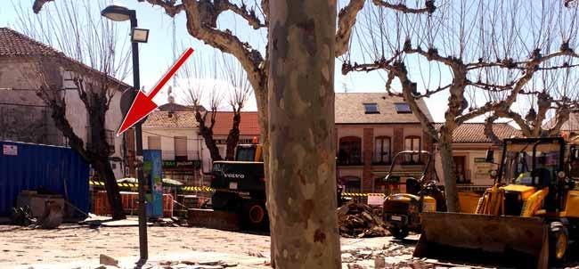 Talado árbol Valdemorillo