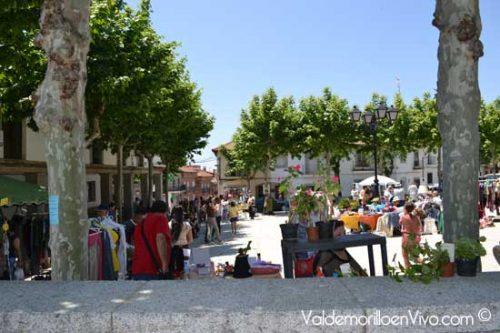 mercadillos Valdemorillo Madrid-1