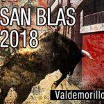 cartel fiestas San Blas Valdemorillo 2018
