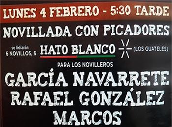 carteles taurinos Valdemorillo San Blas 2019