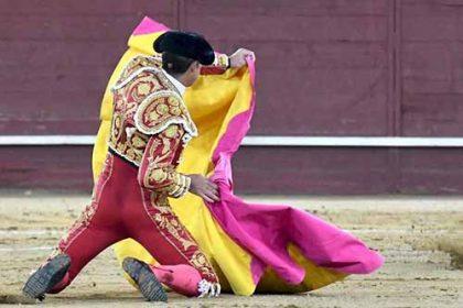 torero Reinasolo